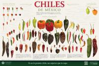 Imagen de Chiles de México